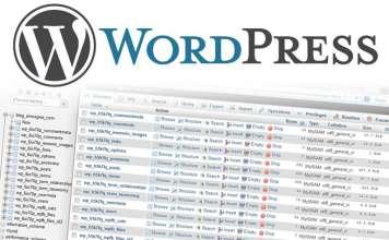 Come ottimizzare il database si un sito Wordpress