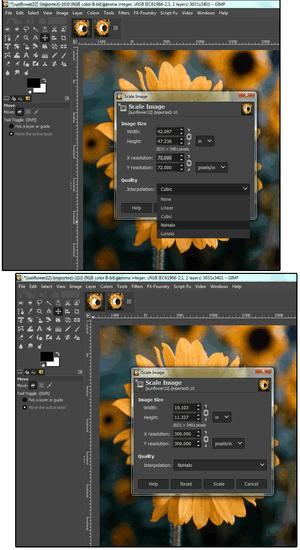 GIMP Ridimensionare foto senza perdere qualità dell'immagine
