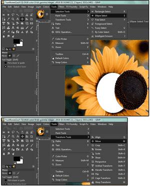 GIMP Strumenti di selezione e trasformazione